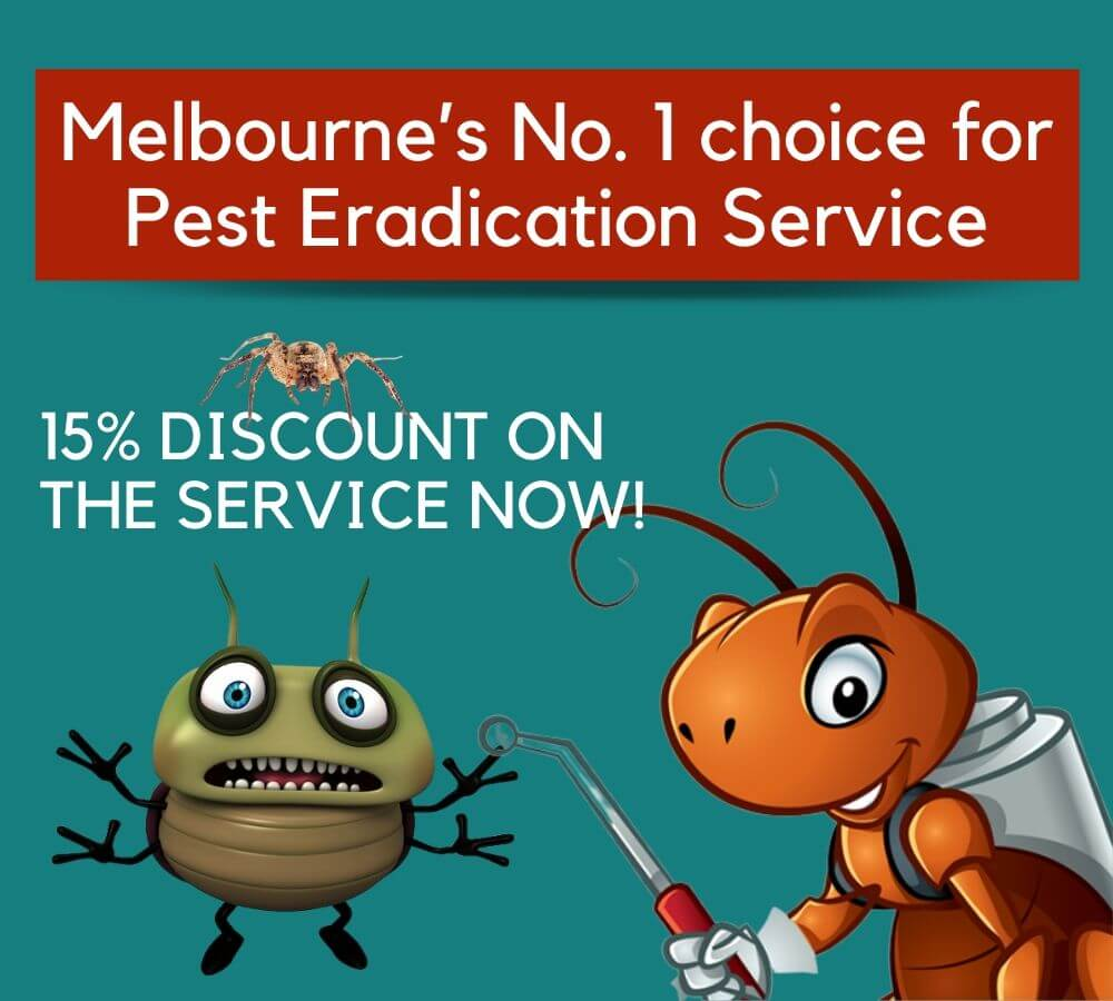 Melbourne's No. 1 choice for Pest Eradication Service