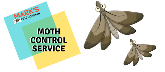 Moth Control Service- Marks Pest Control
