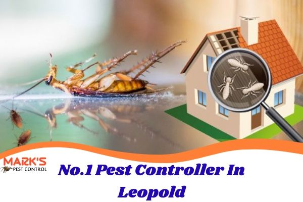 No.1 Pest Controller In Leopold