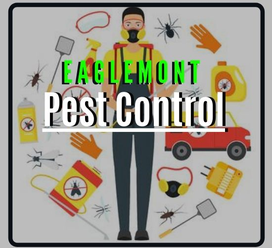 Pest Control Eaglemont