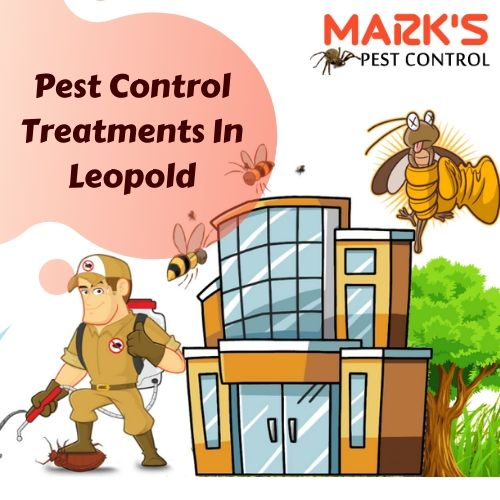 Pest Control Treatments In Leopold