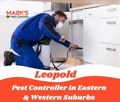 Pest Controller in Eastern & Western Suburbs Leopold