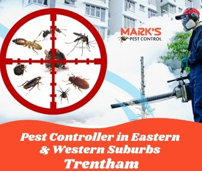 Pest Controller in Eastern & Western Suburbs Trentham