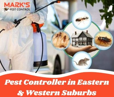Pest Controller in Eastern & Western Suburbs