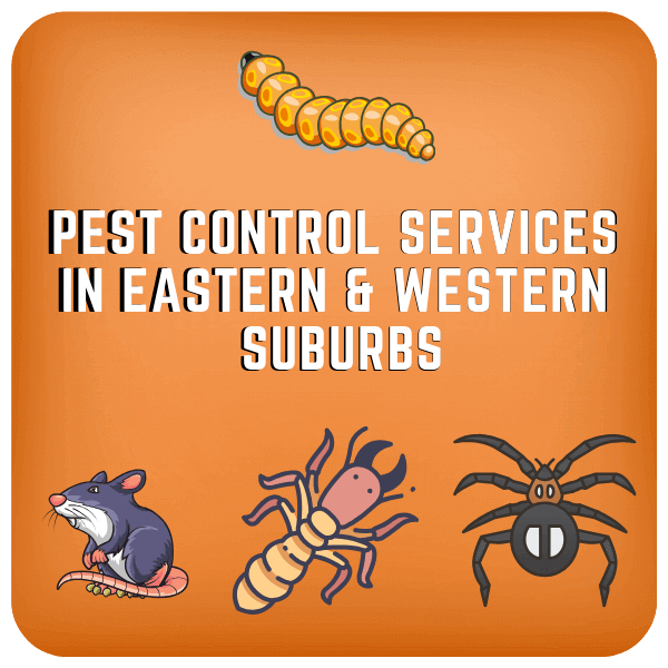 Pest control in eastern & western suburb