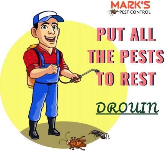 Marks Pest Control Service in Drouin