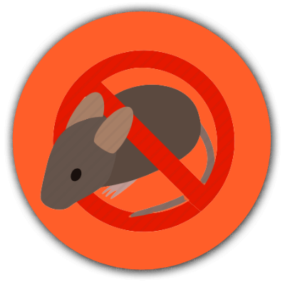 Remove rats from your property