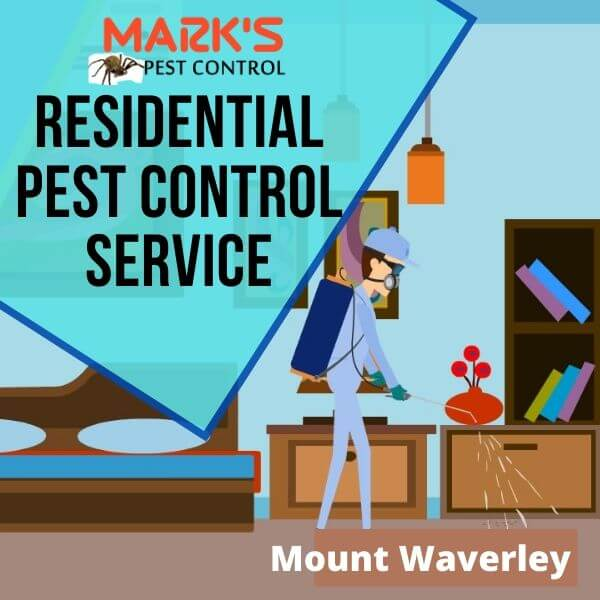 Residential pest control Mount Waverley