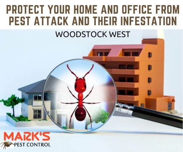 Residential pest control Woodstock West