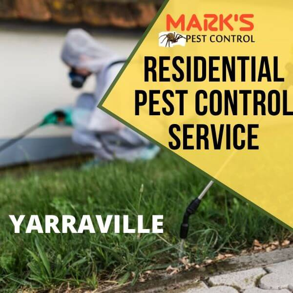 Residential pest control Yarraville