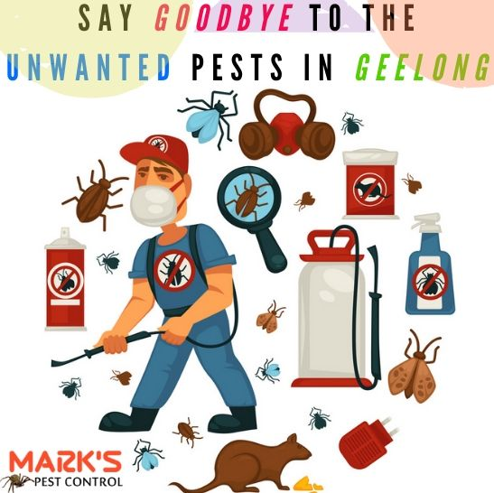 Marks Pest Control Geelong