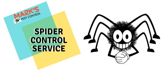 Spider Control Service- Marks Pest Control