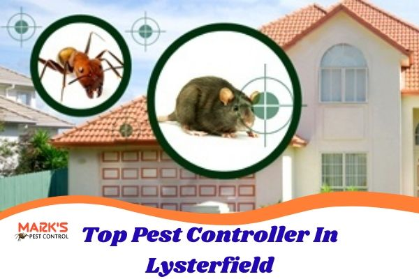 Top Pest Controller In Lysterfield
