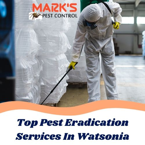 Top Pest Eradication Services In Watsonia