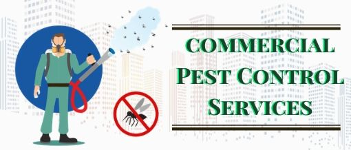 Pest Removal Geelong