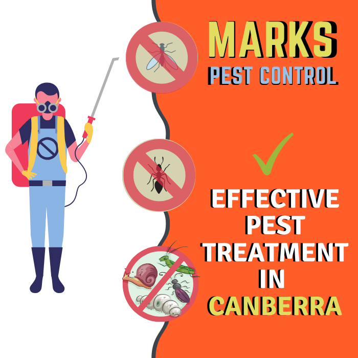 effective pest treatment in canberra