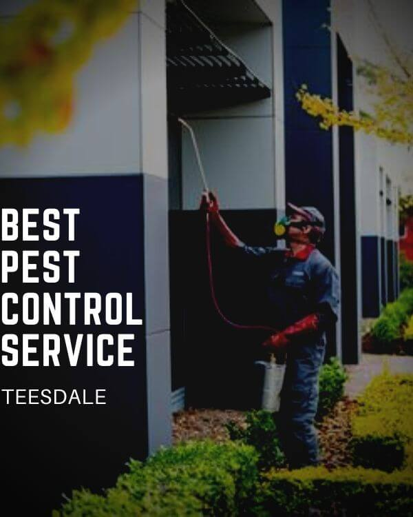pest control teesdale