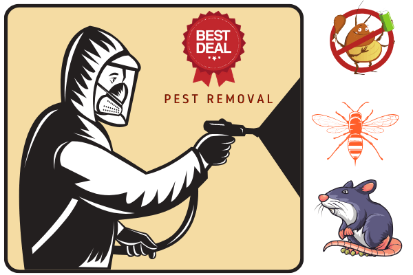 pest removal deal