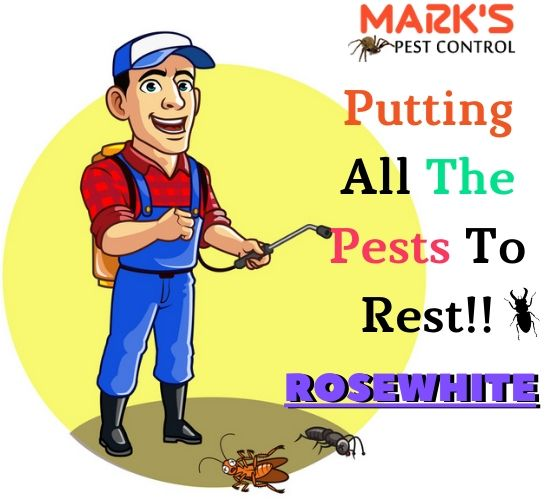 Marks Pest Control Rosewhite