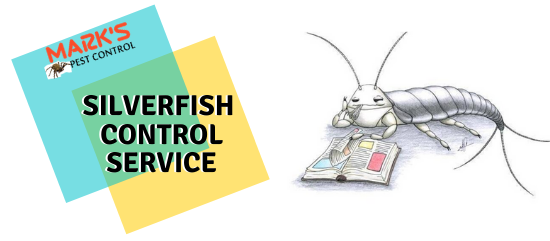 silverfish Control service- Marks Pest control