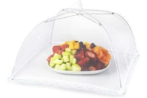 cover food to prevent roaches