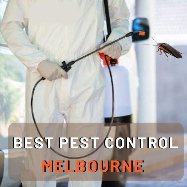 Best Pest Control melbourne