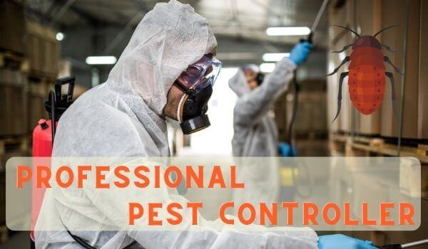professional pest controller