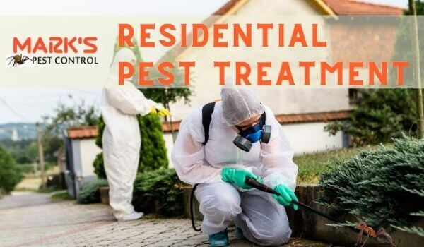 residential pest treatment
