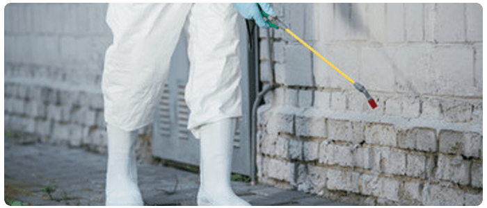 Biological Control and Chemical Control